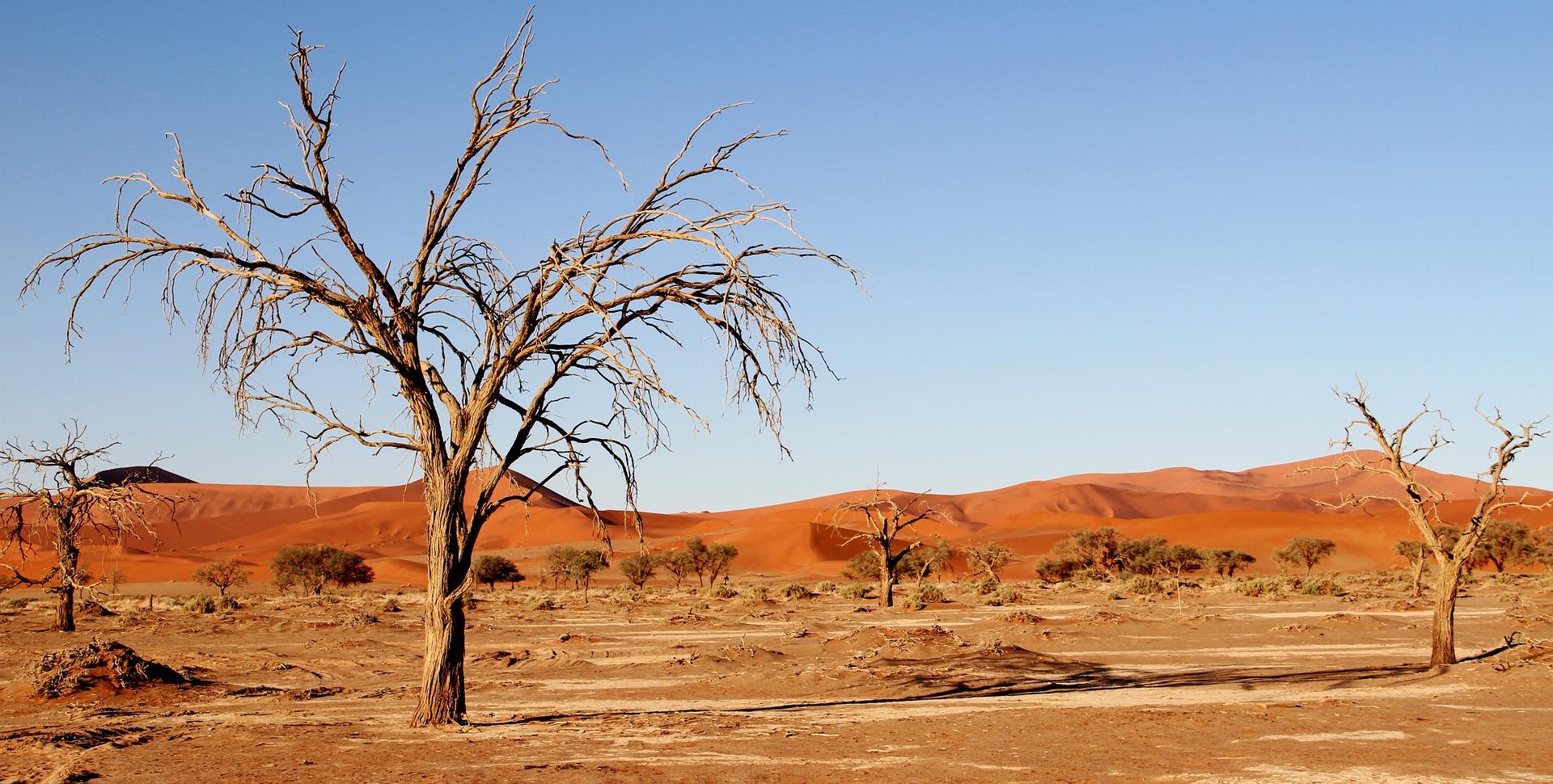 desert-1305049_1920